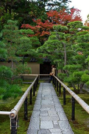 Kôtô-in — 高桐院