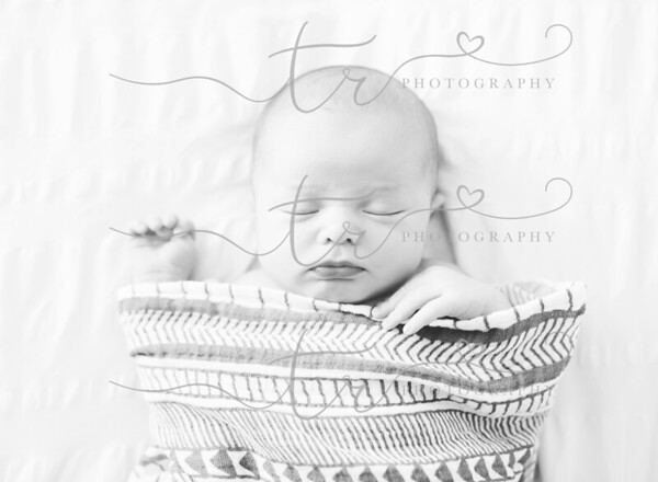 Asher~Newborn