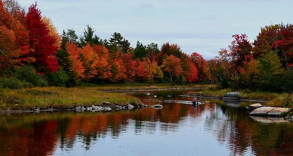 Acadia - October 2016