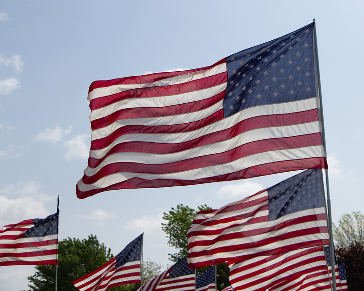 Flags-3.jpg