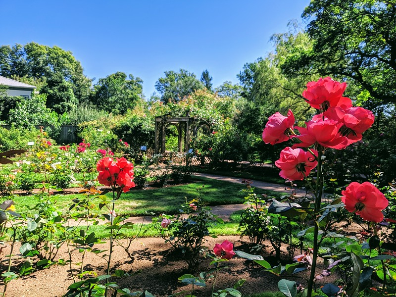 Annapolis Royal Gardens 5.jpg
