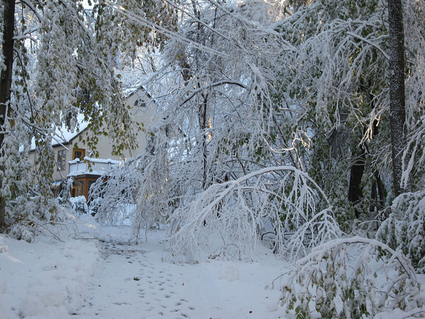 Snowstorm of 2011 (October 30)