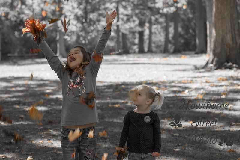 Fall 2015-a53c.jpg