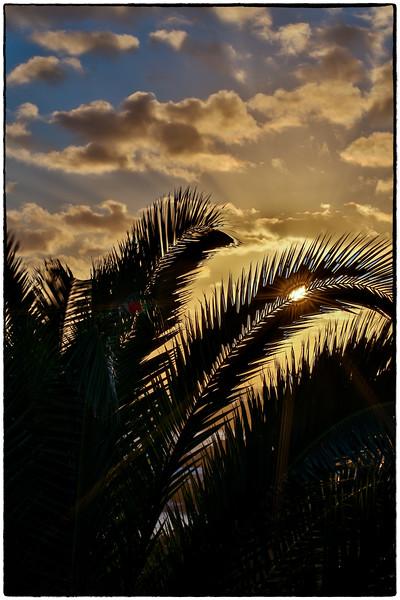 sunburst3-.jpg
