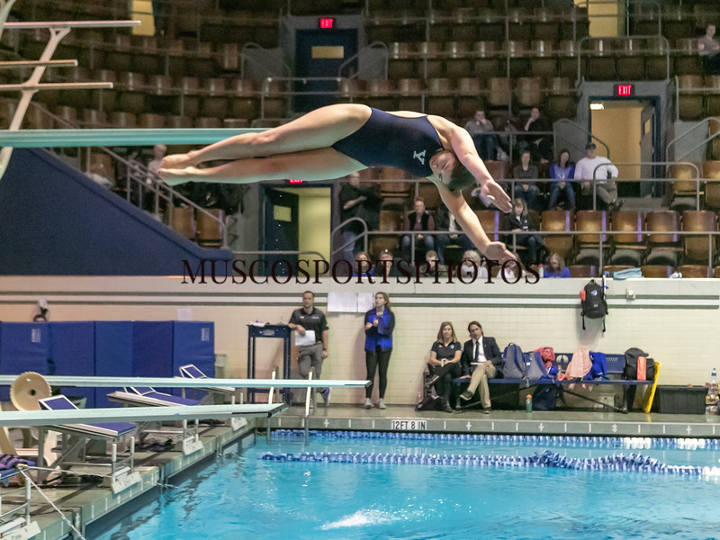 Swimming-diving vs Seton Hall_1104.jpg