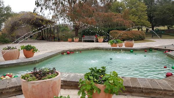 San Antonio Botanical Gardens December 30 2017