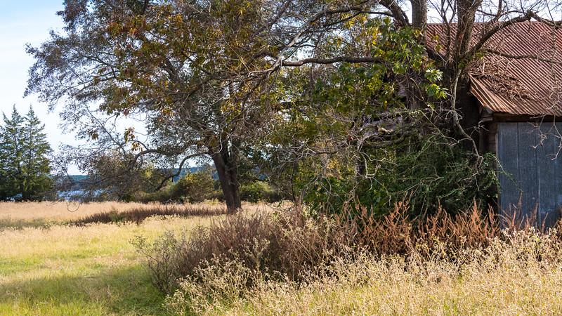 Texas2014-8311.jpg
