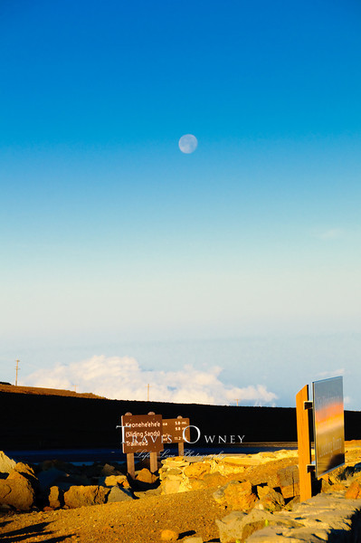 2010 Maui-221.jpg