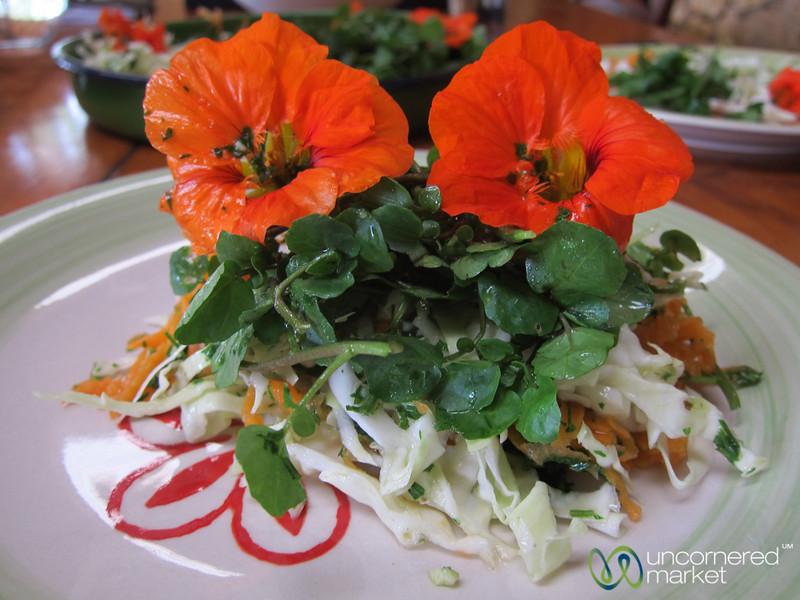 Beautiful Watercress Salad in Seguin, Haiti
