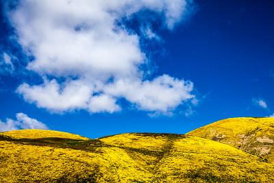 California - Carrizo Plain National Monument - 2017
