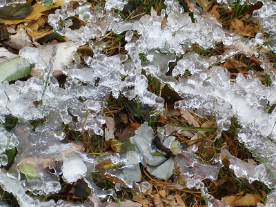 October Frost