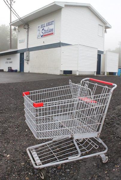 Littered Shopping Cart, Bill Angst Little League Baseball Field, Tamaqua (5-24-2011)