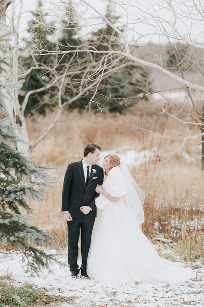 Logan_Sarah_Wedding_Rock_Ridge_Orchard_LLC_Edgar_Wisconsin_November_10_2018-184.jpg
