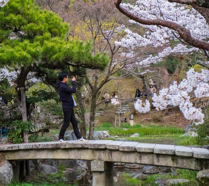 Kyoto Day 8 (132 of 176).jpg