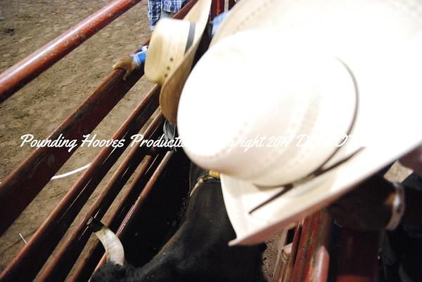 Friday Night Mini Bulls Behind the Chute