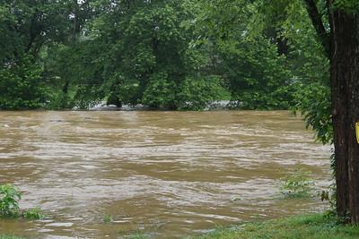 Elkkhorn Creek 9am July 5 2013