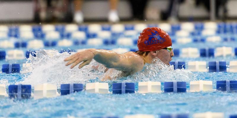 KSMetz_2017Nov29_SHS Swimming9067.jpg