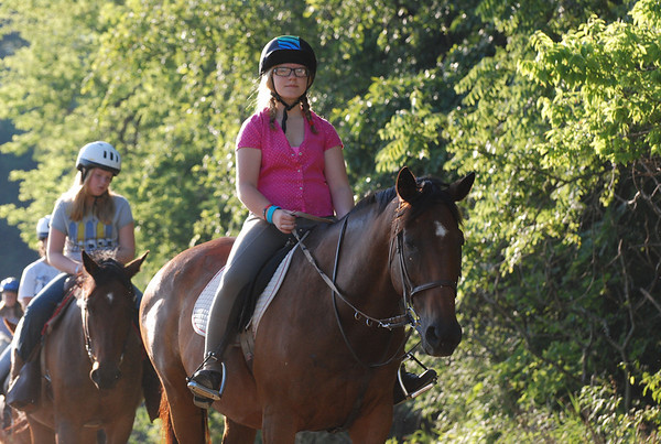 Wednesday Equestrian