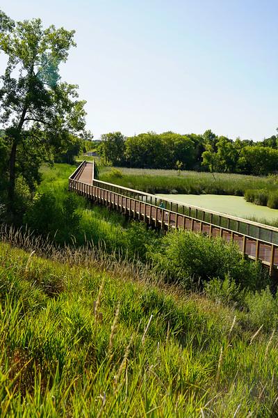 Arboretum August 2021-7.JPG