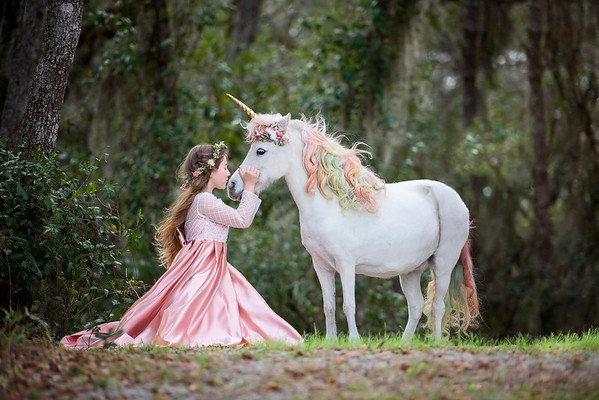 Unicorns Feb 2021 - Chambers