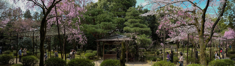 Kyoto Day 9 (56 of 317).jpg