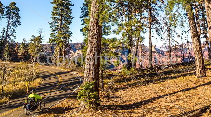 Recumbent Trike on North Rim of Grand Canyon National Park