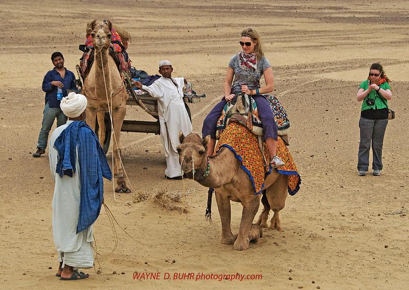 INDIA2010-0208A-280A.jpg