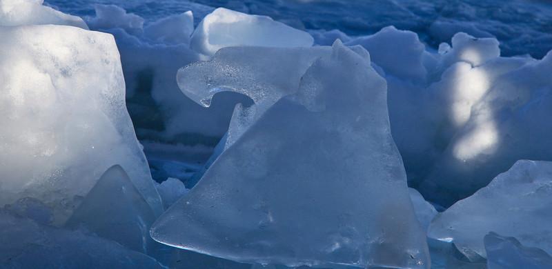 Calgary Bow River Ice