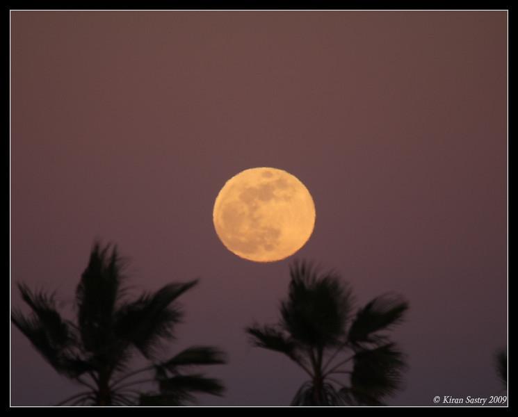 Rising Moon, Robb Field, San Diego River, San Diego County, California, January 2009