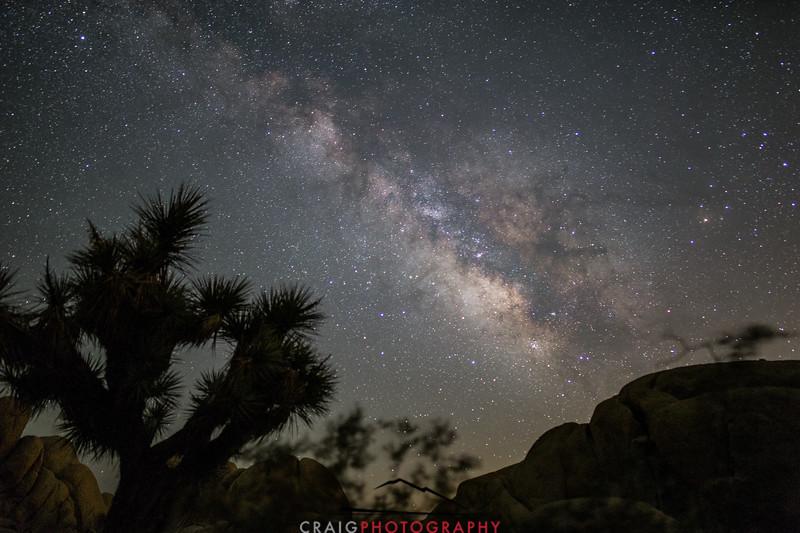 Milky Way over Joshua Tree California 1