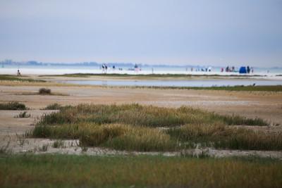 Beach Proposal 12-31-14