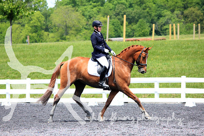 Dressage/Fix-A-Test 2013