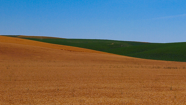 Washington - Palouse Hills