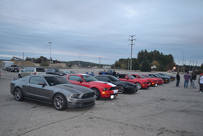 Mustangs of Massachusetts