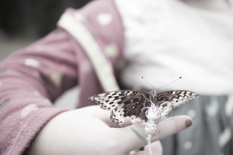 butterfly fingers.jpg
