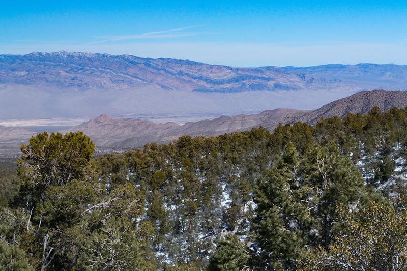 Mojave Desert & Red Rock Canyon, Vegas-DSC_2208-082.jpg