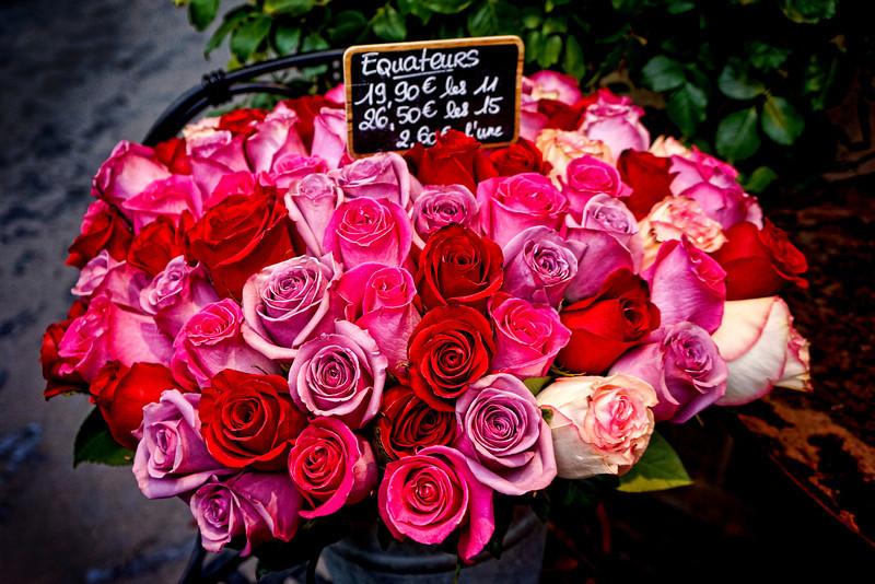 Paris fleurs roses 00489.jpg