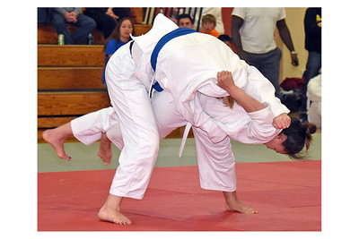 Land of Lakes Open Judo Tournament 2015