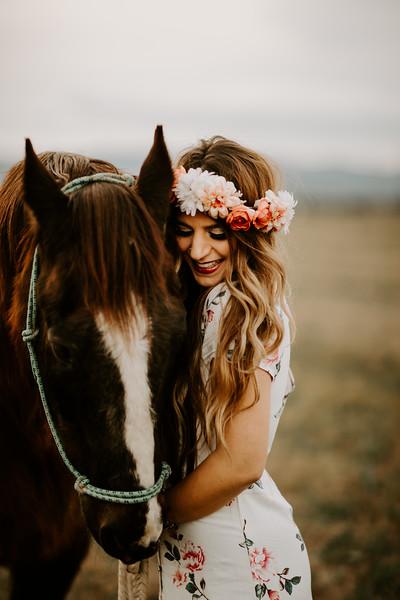horsey-201.jpg