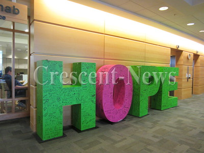 11-30-16 NEWS DP hope letters