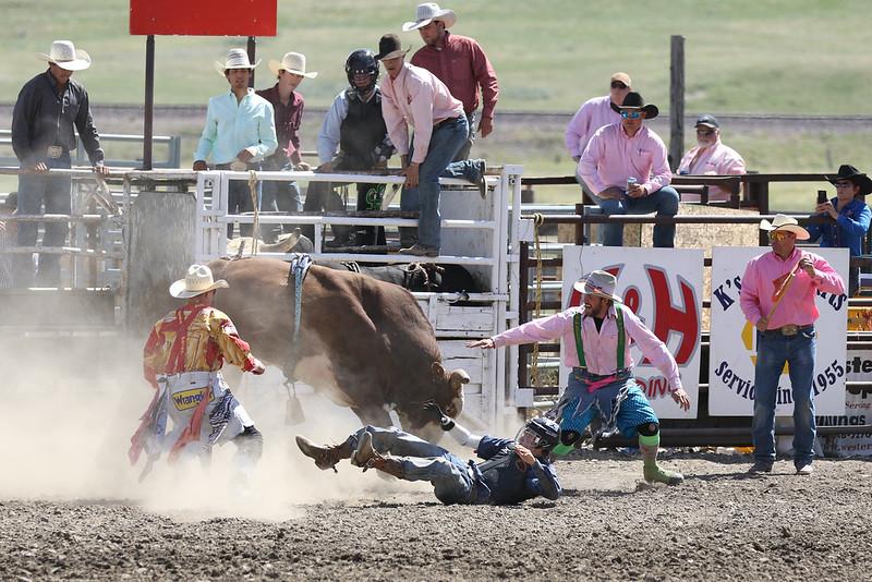 Whoop Up BullRiding 8A9A3461.jpg