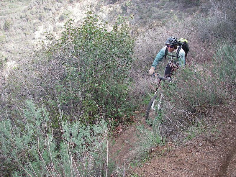 20080202019-Corba Ken Burton Trailwork, Stephen.JPG