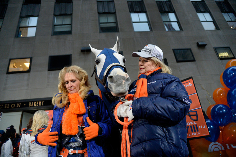. Denver Broncos Cheerleaders along Annie Wegener and Sharon Magness Blake with Thunder, the Broncos� Arabian gelding mascot, made an appearance on the Today show on January 31, 2014 on a brisk morning. Annie Wegener will ride Thunder after touchdowns. (Photo by John Leyba/The Denver Post)