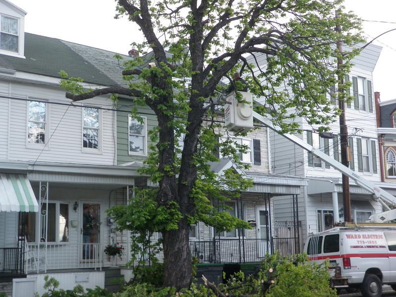 mahanoy city tree incident 5-8-2010 010.JPG