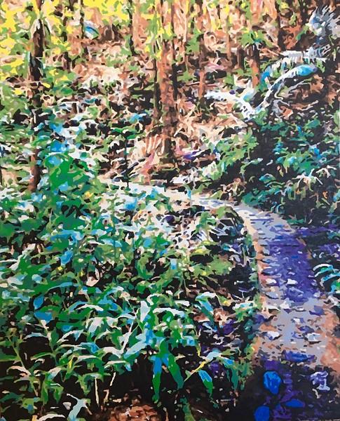 Tropical Rainforest Path