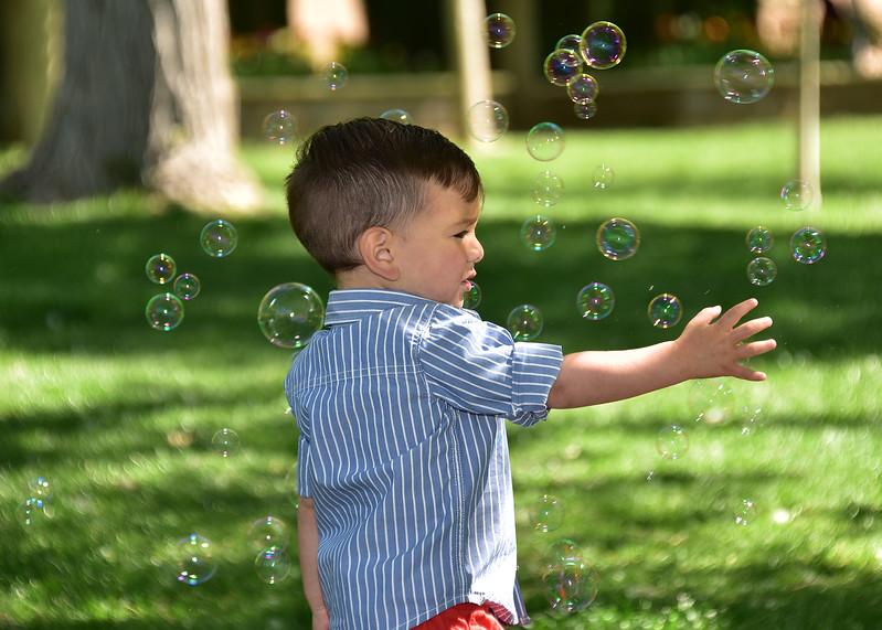 NEA_2416-7x5-Tri-Bubbles.jpg