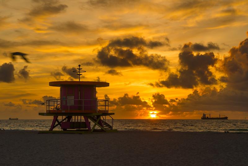 Miami-33.jpg