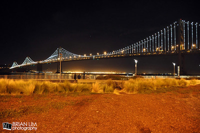 Bay Bridge Lights 3.14.2013