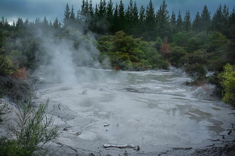 Rotorua-110.jpg
