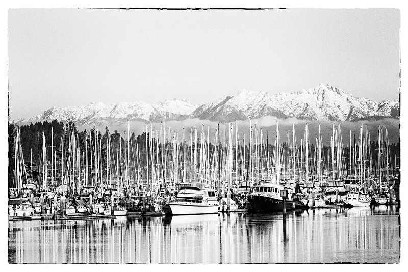 Swantown Marina Dawn with the Olympics in the distance | Olympia, WA